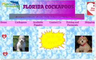 Florida Cockapoos