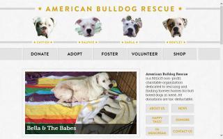 American Bulldog Rescue - ABR