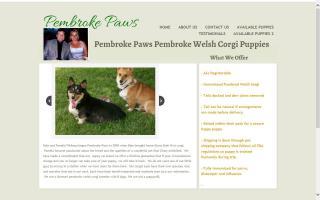 Pembroke Paws