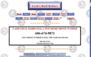 Cash's Bull Babies