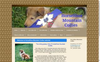 HorseShoe Mountain Collies
