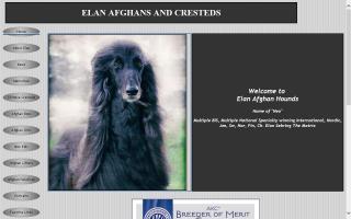 Elan Afghan Hounds