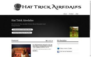 Hat Trick Airedales