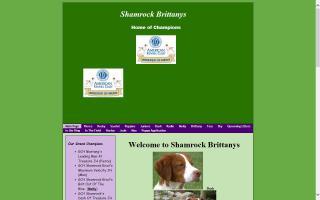 Shamrock Brittanys
