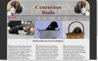 Centurion Bullmastiffs
