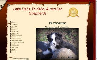 Little Debs Toy/Mini Australian Shepherds