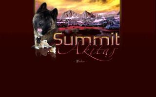 Summit Akitas