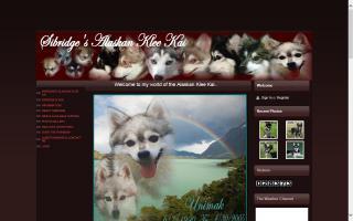 Sibridge's Alaskan Klee Kai