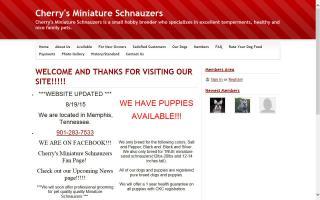 Cherry's Miniature Schnauzers
