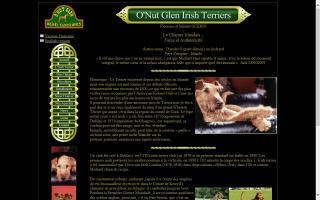 O'Nut Glen Irish Terriers
