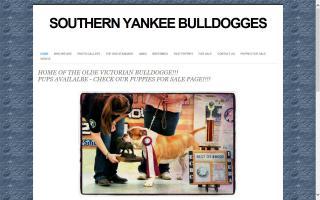 Southern Yankee Bulldogges