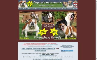 Puppychase Kennels