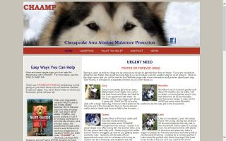 Chesapeake Area Alaskan Malamute Protection - CHAAMP