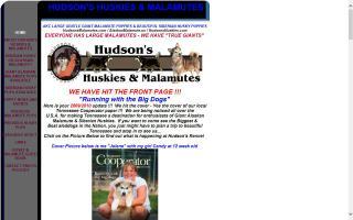 Hudson's Huskies & Malamutes