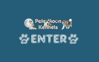 Pale Moon Kennels