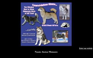 Nanuke Alaskan Malamutes