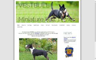 Velvest Miniature Bull Terriers