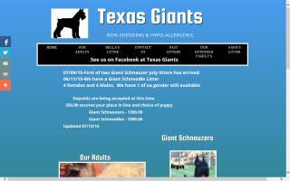 Texas Giants
