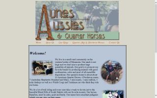 Aune's Aussies & Quarter Horses