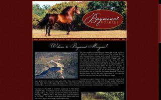 Baymount Morgan Horses