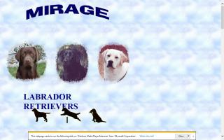 Mirage Labrador Retrievers