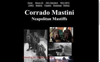 Corrado Mastini Neapolitan Mastiffs