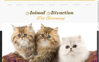Animal Attraction Pet Grooming / Vanier Kennel