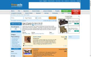 Freeads.co.uk - Dogs For Sale