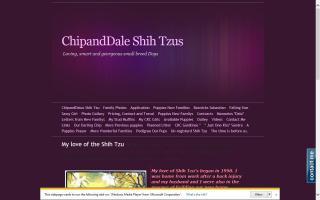 ChipandDales Shih Tzus