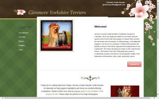 Glenmore Yorkshire Terriers