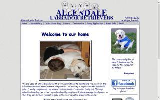 Allendale Labradors