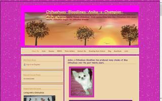 Anikas Chihuahuas Bloodlines