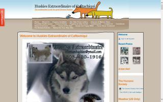 Huskies Extraordinaire of Cafitachiqui