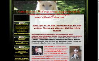 Northern California's Wolf Hybrid Ranch