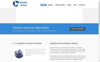 Setter Inglés de Sonella