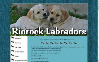 Riorock Labradors