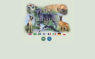 Thidalium Kennel