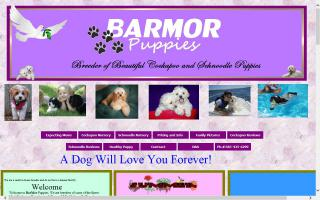 BarMor's Puppies