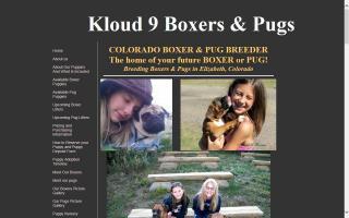 Kloud 9 Boxers & Pugs