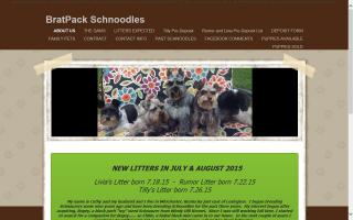 Brat Pack Schnauzers and Schnoodles