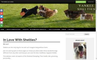 Yankee Shelties
