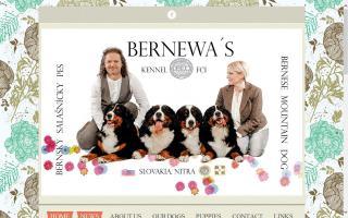 Bernewa's